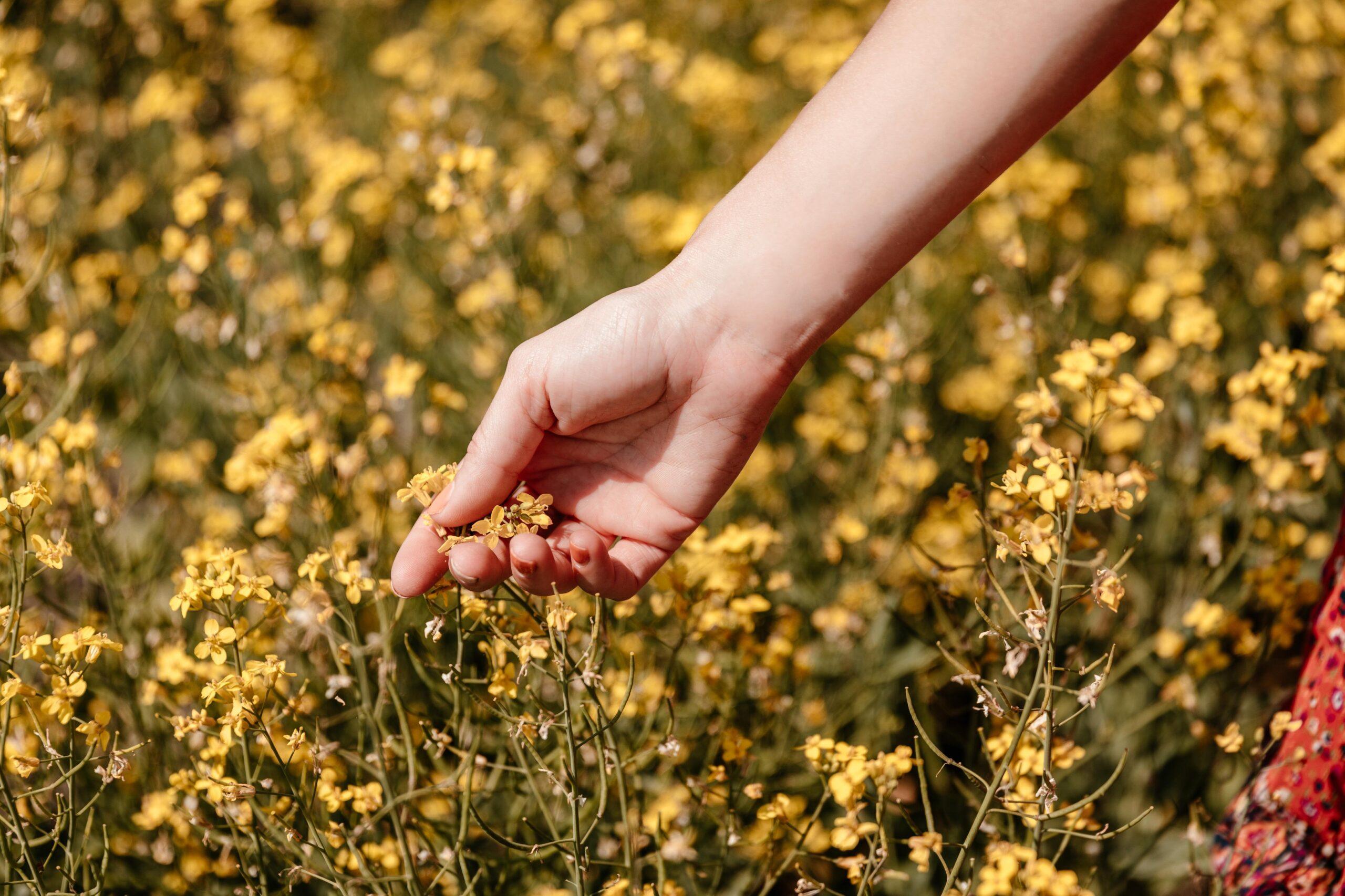 Comment la naturopathie améliore votre moral ou comment mettre en place une « happy routine »